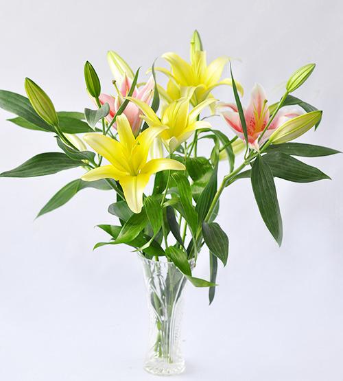 Áp dụng ngay cách cắm hoa ly để bàn đơn giản