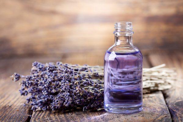 Tác dụng của tinh dầu hoa lavender đối với sức khoẻ và sắc đẹp